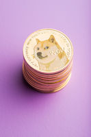 The golden dogecoins.