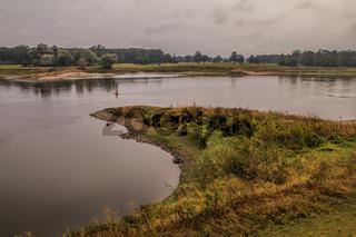 Elbauen bei Brambach an der Mittelelbe, Sachsen-Anhalt, im September.