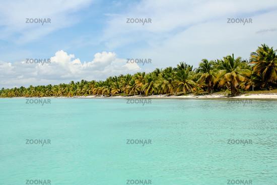 Foto Palmenstrand In Der Karibik Bild 1320873