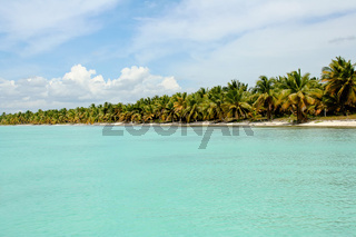 Palmenstrand in der Karibik