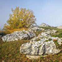 Herbst am Morgen auf dem Goldberg im Burgenland
