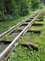 Schienen, Moorbahn, Schmalspur, Bad Schwalbach