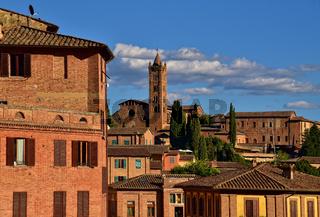 Altstadt von Siena mit Blick auf die Basilica dei Servi