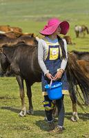 Junge mongolische Frau mit modischem Hut und Melkeimer schaut nach einer Stute zum Melken