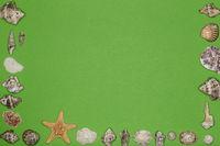 Muschelrahmen auf grünem Hintergrund