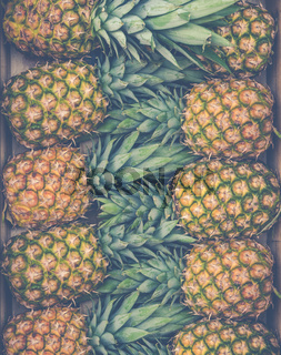 Fresh Market Pineapples