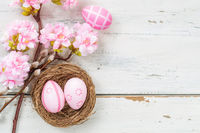 Pink easter eggs with a cherry blossom