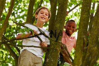 Zwei Jungen in den Ferien auf einem Baum