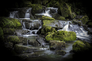 Waterfall in the Lumsdale Valley, Matlock, Derbyshire, Peak District, England