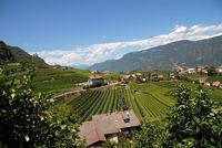 Dorf Tirol mit Schattenburg im Hintergrund
