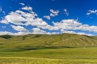 Sanfte Hügel in der mongolischen Steppe, Orchon-Tal, Mongolia