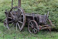 Holzwagen und Wagenrad