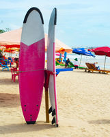Surfing rental on Bali island