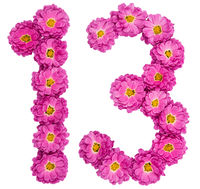 Arabic numeral 13, thirteen, from flowers of chrysanthemum, isolated on white background