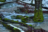 Wangenbach beim Talheimer Wasserfall
