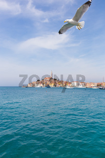 Beautiful View Of Rovinj City, Croatia, Europe
