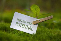 Unfold your Potential