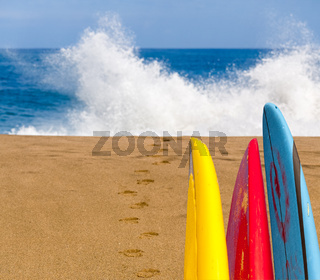 Sandy beach with surfboards to water
