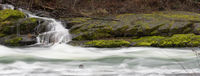 Mossy Waterfall Riverbank Umpqua River National Forest Oregon