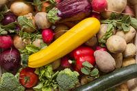Gelbe Zucchini und anderes Bio Gemüse in einer bunten Gruppe als gesundes Stilleben