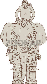 War Elephant Mahout Rider Drawing