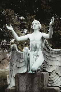 Auf einem Friedhof kniet eine Engelsstatue und hat die Hände zum Himmel erhoben.