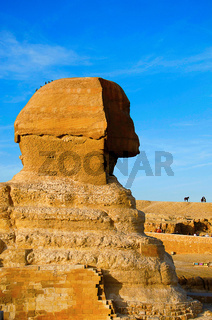 A great sphinx, Is a mythical creature with the head of a human and the body of a lion