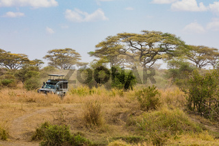 Jeep Safari in dem Tarangire Nationalpark