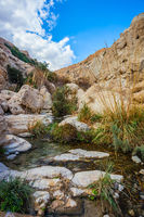 The stream flows through the gorge Ein Gedi