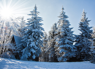 Perfect New Year's in the Czech Tatras