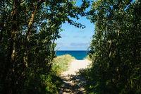 Strand an der Ostsee bei Graal Müritz