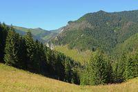 Chocholowska Tal von Jamy Lichtung aus  gesehen, West Tatra, Polen