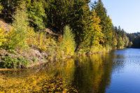 Jahreszeit Herbst Herbststimmung am See Fürstenteich