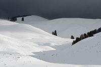 hell und dunkel... Wetterverhältnisse *Yellowstone National Park*