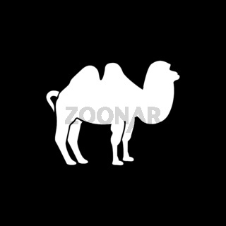 Camel it is white icon .