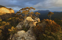 Blue Mountains, Jamison Valley to Mount Solitary