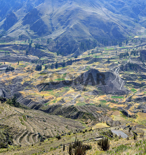 Sacred Valley with the cultivated farmer fields