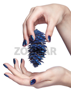 Female hands with blue Christmas fir-cone and shiny nails manicure isolated on white