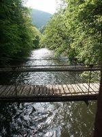 Hängebrücke Feistritzklamm