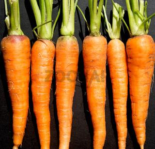 raw ripe carrots