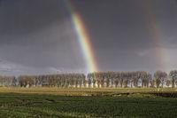 Regenbogen im Herbst
