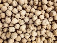 walnuts , pile of nuts, walnuts background