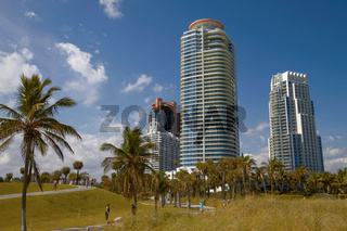 People Relaxing and Enjoying Sunny Day in Park Close to Miami Beach in Florida, United States.