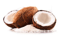 Composition with shredded coconut and shells isolated on white background