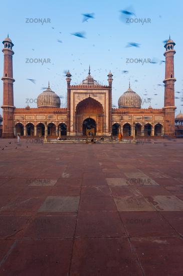 Delhi Main Mosque Birds Blur Morning