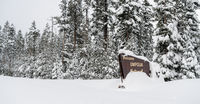 Winter Woods Umpqua National Forest Welcome Sign