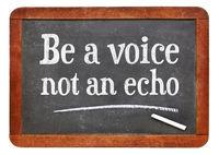 Be a voice, not an echo advice