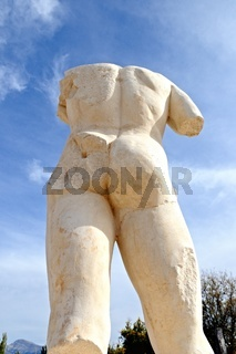 Male torso from behind