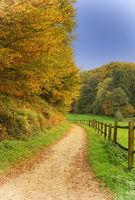 Herbstlicher Wanderweg im Bergischen Land, Odenthal, Deutschland