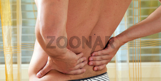Pain in the back. Intervertebral disc and spinal column.